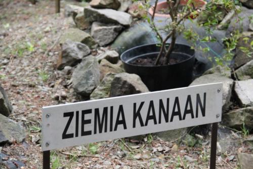 4.06.2018 Chcesz odpocząć- jedź w Bieszczady!